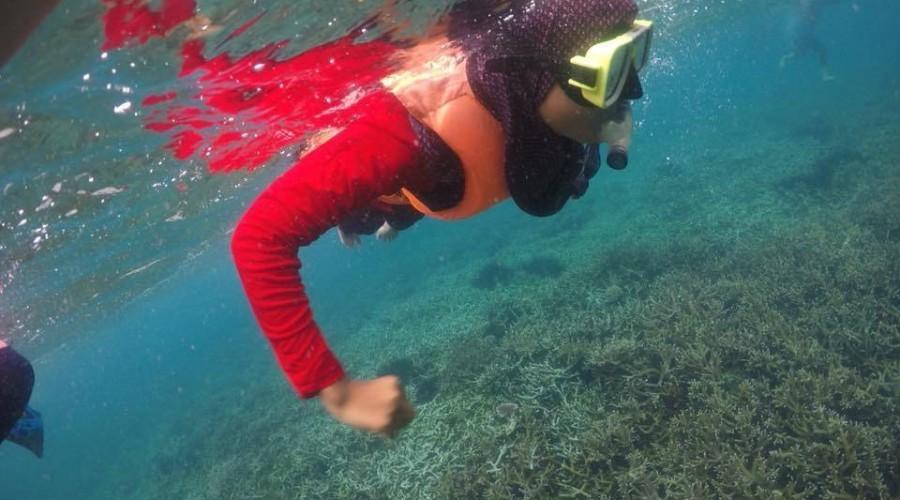 Aktiviti Snorkeling di Damai Tioman Resort