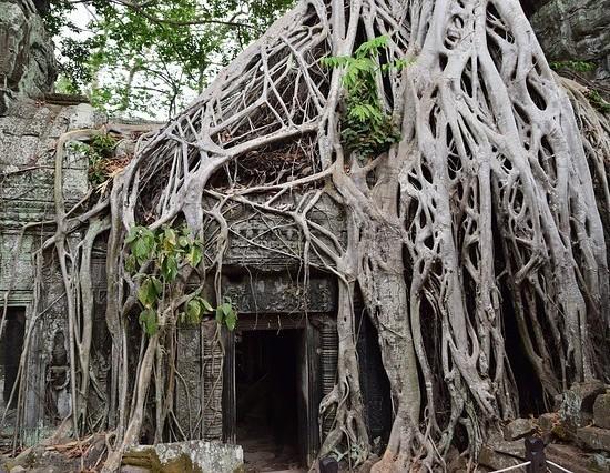 Pakej Percutian Siem Reap