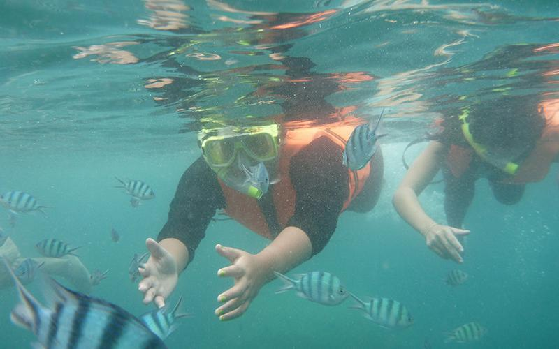 Snorkeling Samudra Beach Chalet